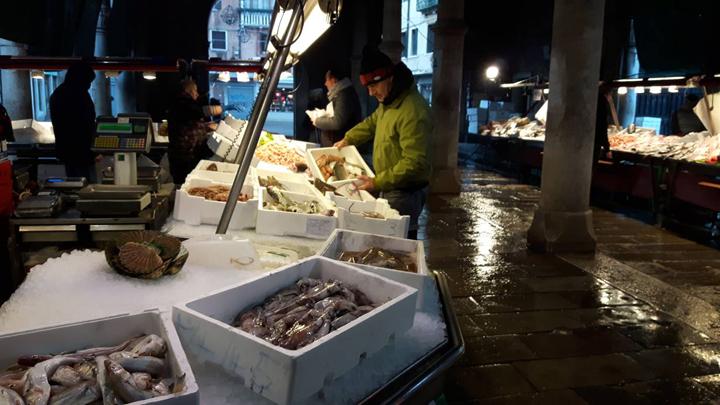Venice, Rialto fish market, arranging the fish