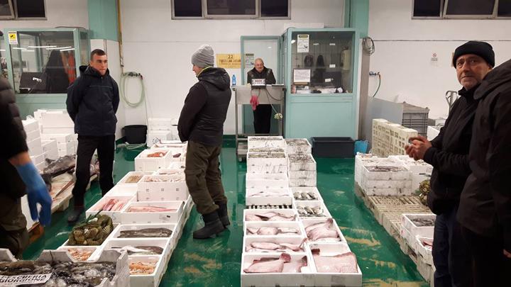 Venice, wholesale fish market