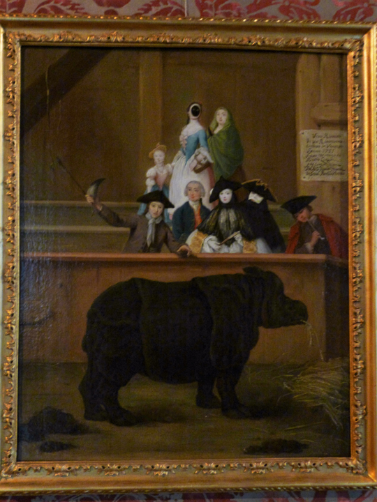 Venezia, Ca' Rezzonico, Il Rinoceronte (di Pietro Longhi)