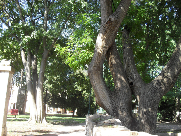 Parco Villa Groggia, Venezia