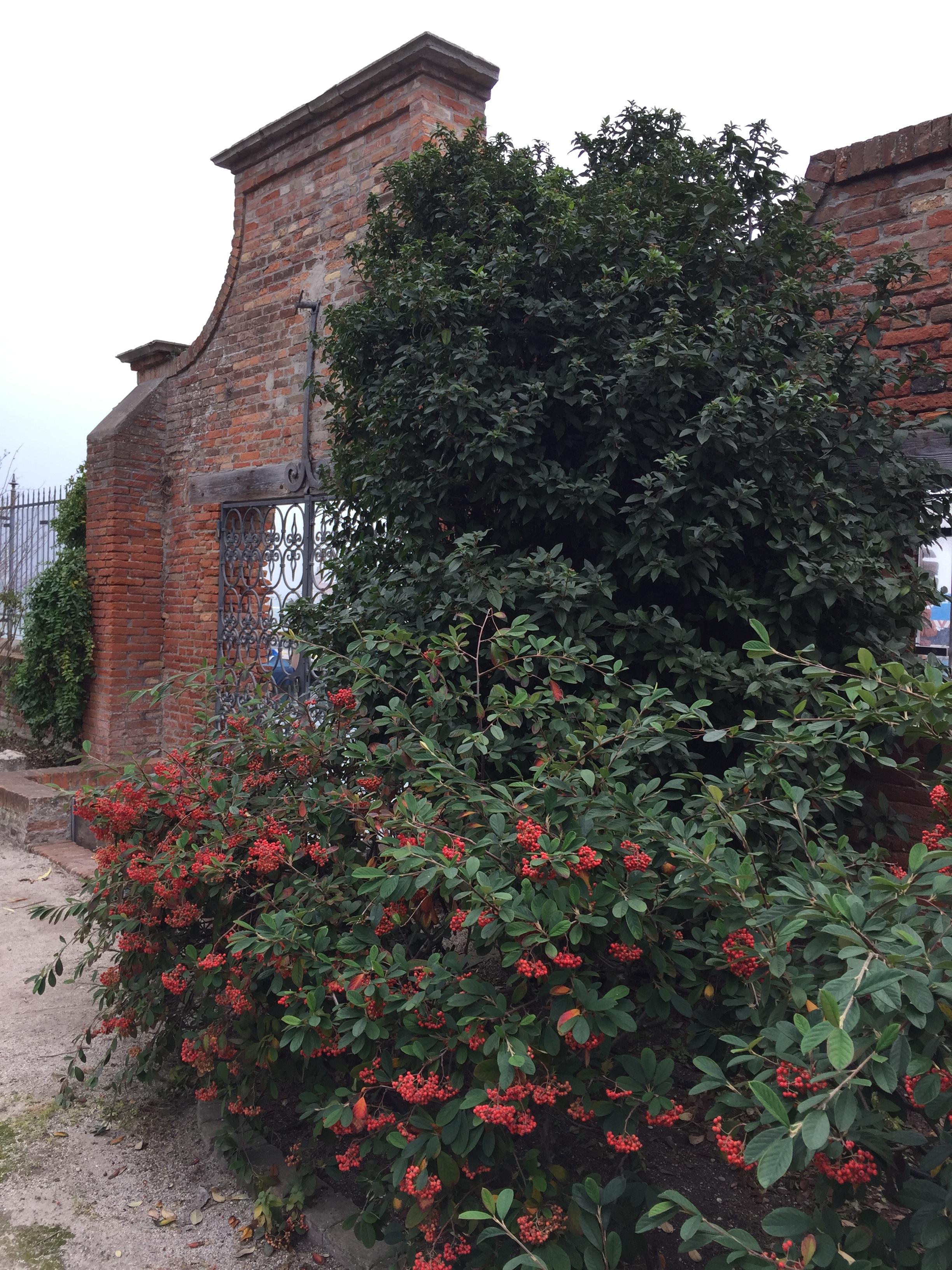 : ouverture sur le côté du petit port actuel avec les baies rouges de la Viorne tin