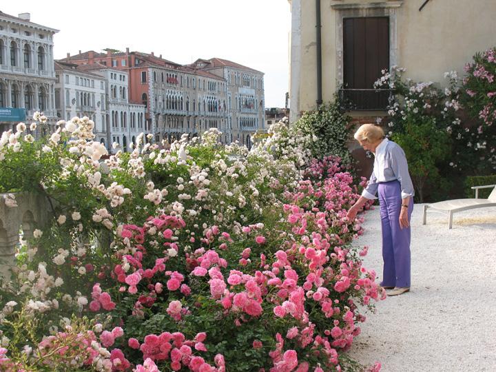 Venezia, Palazzo Malipiero Barnabò, Anna tra le rose Petal Pusher e le bianche Sea Foam che richiamano la schiuma dell'acqua