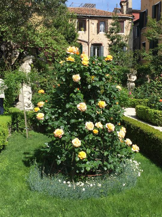 Venezia, Palazzo Malipiero Barnabò, rosa Gioia con statua dell'estate a sinistra e sullo sfondo la statua dell'inverno a destra