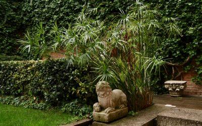 Il giardino Querini Stampalia di Carlo Scarpa: un simbolo di Venezia