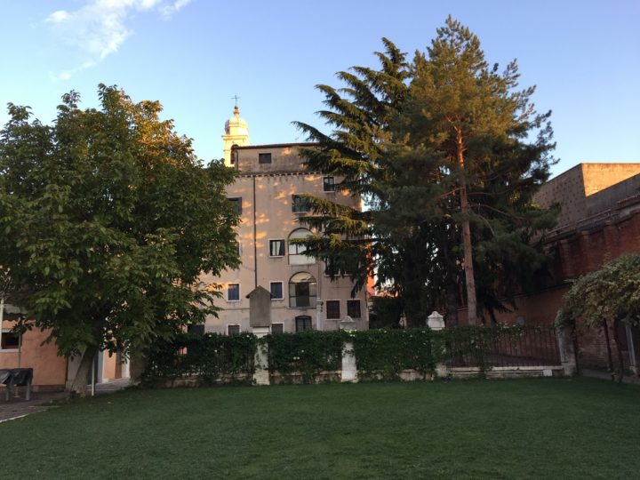 Photo 7 lawn towards the convent with a lovely walnut tree on the left and conifers on the right