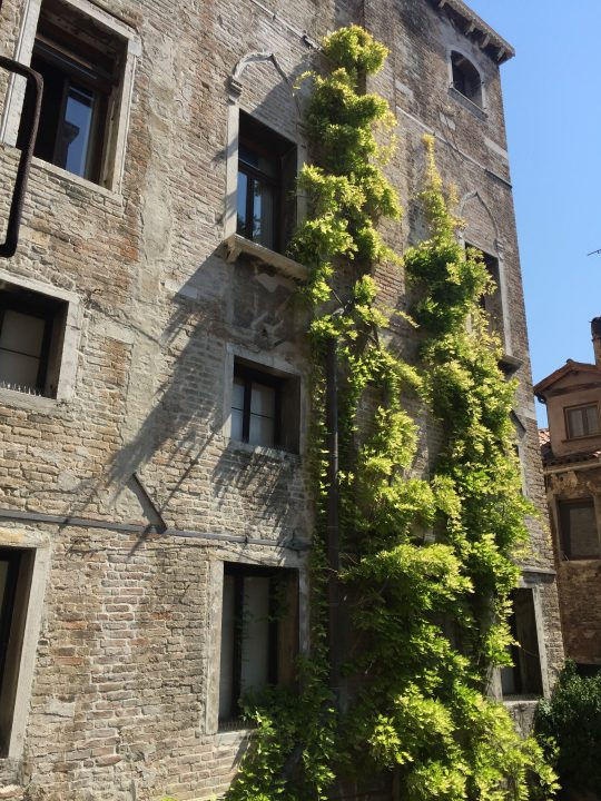 photo 1: Palazzo Fortuny façade towards the inner courtyard